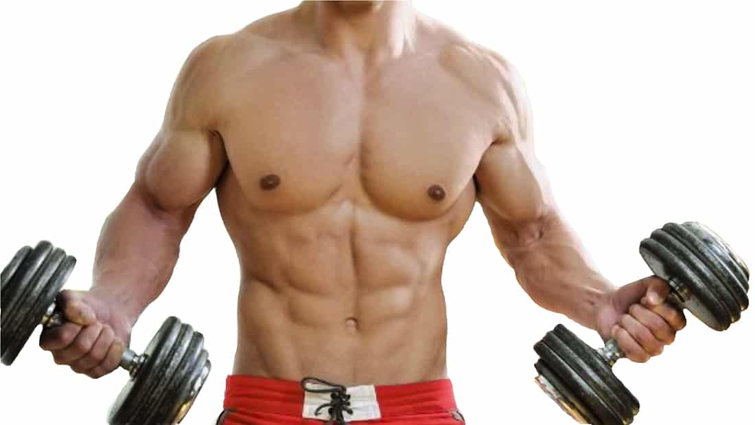 Ganancia de masa muscular, 3 aspectos a tener en cuenta.