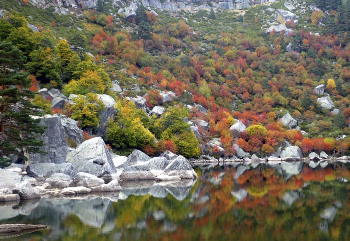 Colores del otoño en el centro y sur de España.