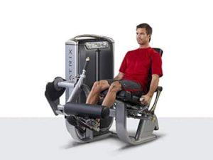 Ejercicios Para Proteger Tus Rodillas Altafit Gym Club