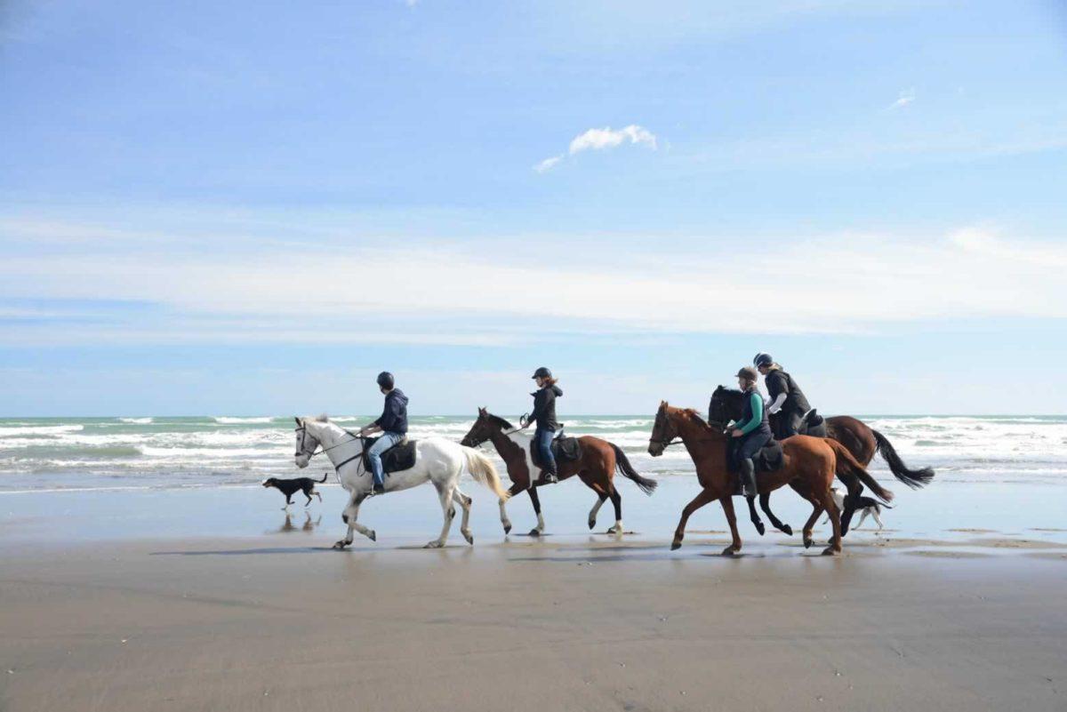 5 rutas a caballo por España