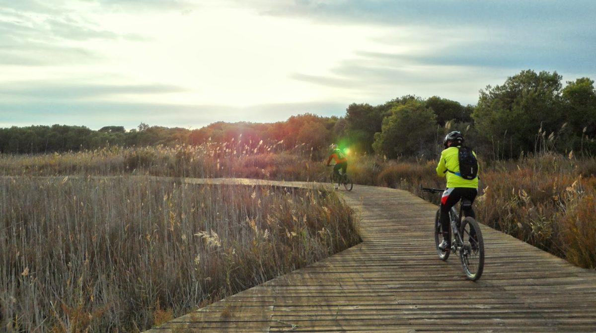 Rutas cicloturistas para hacer en familia